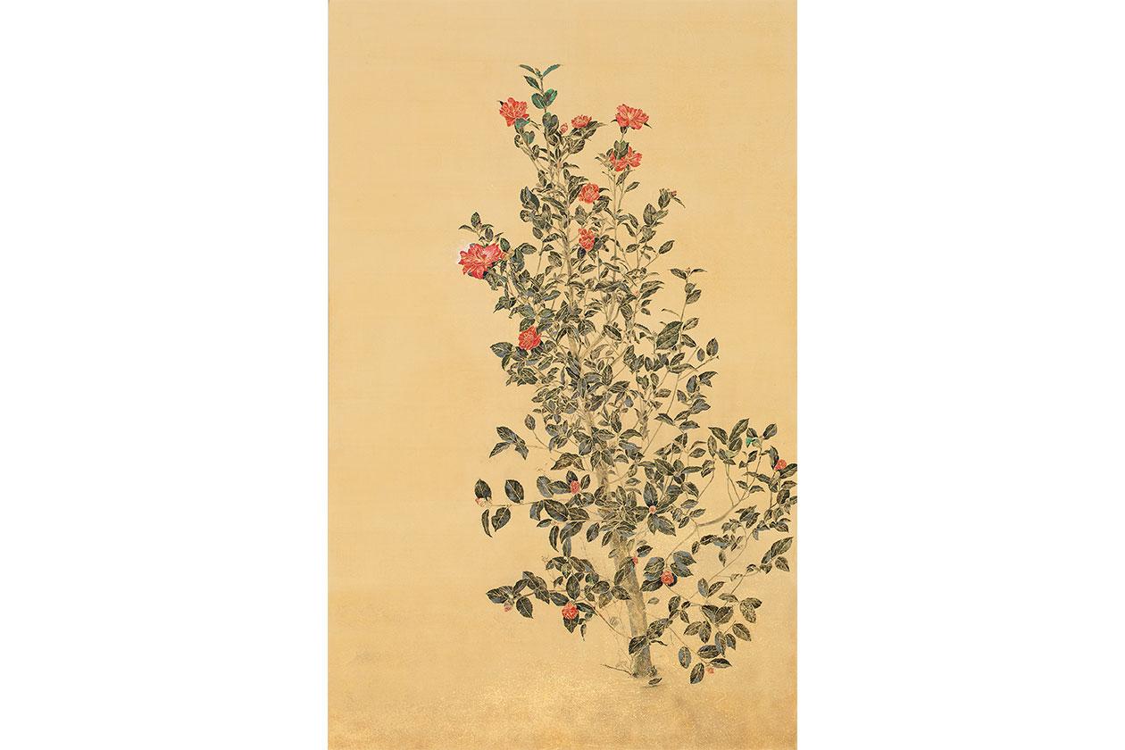 blooming 1 秋山由佳