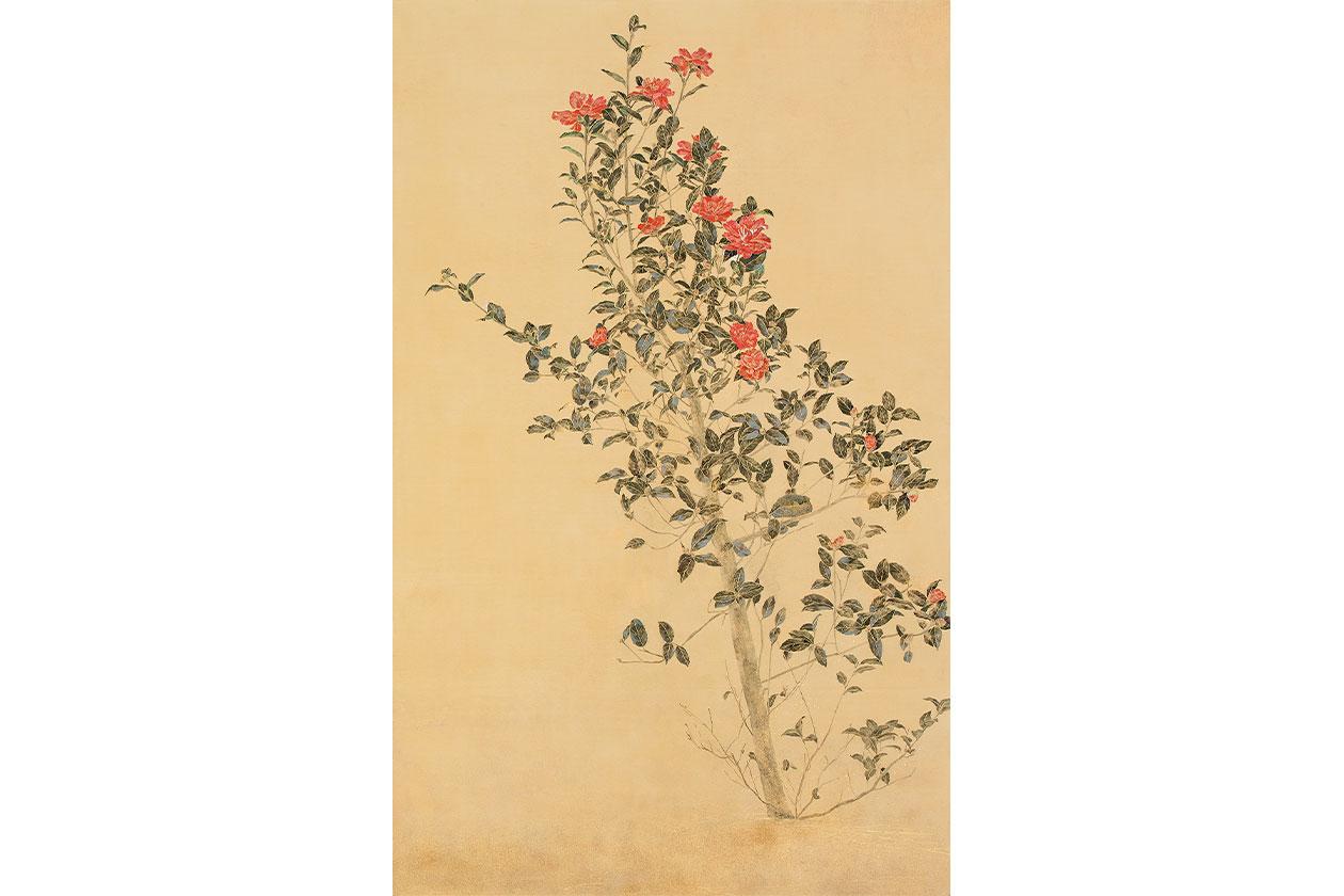 blooming 2 秋山由佳
